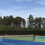 Family Tennis Time